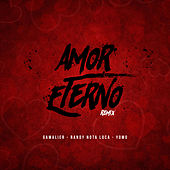 Amor Eterno (Remix) von Various