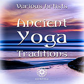 Ancient Yoga Traditions van Various