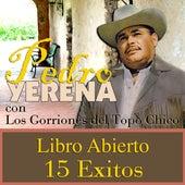 Libro Abierto by Pedro Yerena