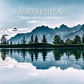 Awakenings by Kimberly and Alberto Rivera