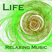Life - Relaxing Piano Music by The O'Neill Brothers