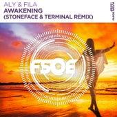 Awakening (Stoneface & Terminal Remix) by Aly & Fila