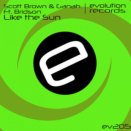 Like The Sun (feat. Bridson) by Scott Brown