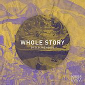 Whole Story Of Electro House by Various Artists