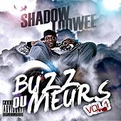 Buzz ou meurs, vol. 1 by Shadow Loowee