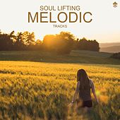 Soul Lifting Melodic Tracks de Various Artists