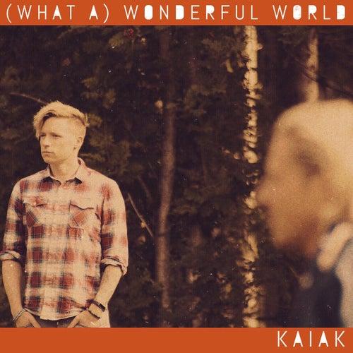 (What A) Wonderful World de Kaiak