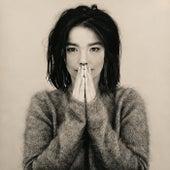 Debut by Björk