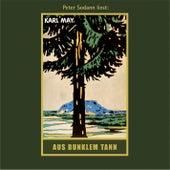 Aus dunklem Tann - Karl Mays Gesammelte Werke, Band 43 (Ungekürzte Lesung) von Karl May