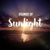 Sounds of Sunlight by Big Zach