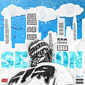 219 Season de Various Artists