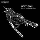 Nocturnal by Jakob Lindberg