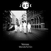 Voices / Wonderful Sin by A Band Called Jack