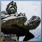Spring 2018 von Various Artists