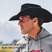 Run Wild Horses (Radio Edit) by Aaron Watson