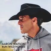 Run Wild Horses (Radio Edit) de Aaron Watson
