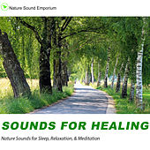 Sounds For Healing - Nature Sounds for Relaxation, Meditation, Healing & Deep Sleep by Nature Sounds (1)