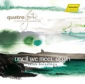 Until We Meet Again: Irish Blessings by Various Artists