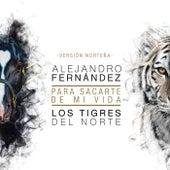 Para Sacarte De Mi Vida (Versión Norteña) de Alejandro Fernández
