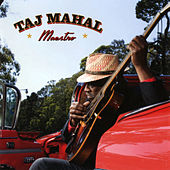 Maestro von Taj Mahal
