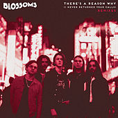 There's A Reason Why (I Never Returned Your Calls) (Remixes) by Blossoms