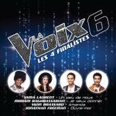 La Voix 6: Les 4 finalistes de Artistes Variés (Interprètes incluant Céline Dion)