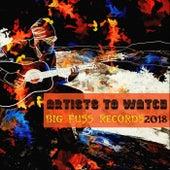 Artists to Watch 2018 von Various Artists