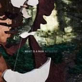 What Is a Man (Acoustic) de Dan Owen