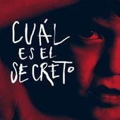Cuál es el secreto (Remix) de Fernando Milagros