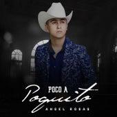 Poco a Poquito von Angel Rosas