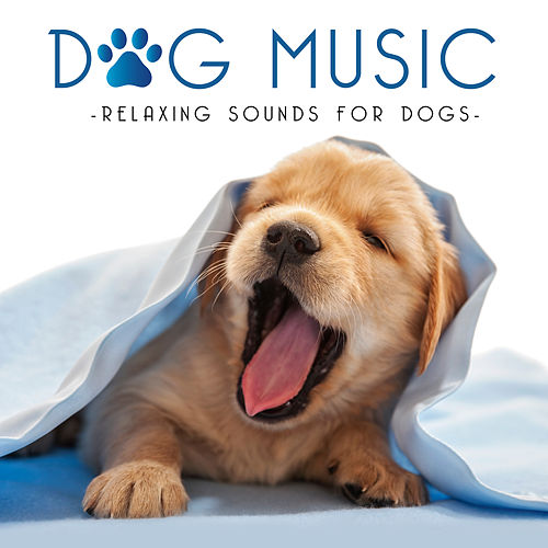 Dog Music - Relaxing Music for Dogs de Various Artists