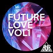 Future Love Vol1 de Various Artists