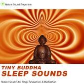 Tiny Buddha Sleep Sounds - Nature Sounds for Relaxation, Meditation, Healing & Deep Sleep by Nature Sounds (1)