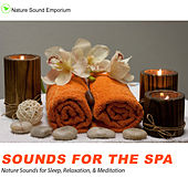 Sounds For The Spa -  Nature Sounds for Relaxation, Meditation, Healing & Deep Sleep by Nature Sounds (1)