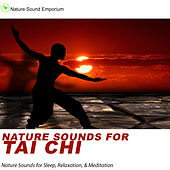 Nature Sounds For Tai Chi --  Nature Sounds for Relaxation, Meditation, Healing & Deep Sleep by Nature Sounds (1)