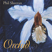 Orchid by Phil Sheeran