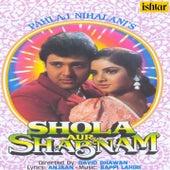Shola Aur Shabnam (Original Motion Picture Soundtrack) de Various Artists