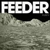 Purify by Feeder