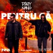 Pentru Că (Dirty Nano Remix) de Inna
