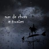 Som de Chuva e Trovões de Sons da Natureza Projeto ECO Brasil