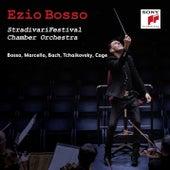 StradivariFestival Chamber Orchestra by Ezio Bosso