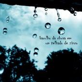 Barulho da Chuva em um Telhado de Zinco de Sons da Natureza Projeto ECO Brasil