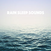 Rain Sleep Sounds de Various Artists