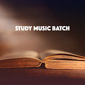 Study Music Batch by Various Artists