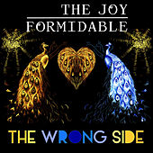 The Wrong Side von The Joy Formidable