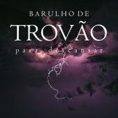 Barulho de Trovão (Para Descansar) de Sons da Natureza Projeto ECO Brasil