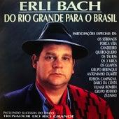 Do Rio Grande para o Brasil de Erli Bach