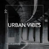 Urban Vibes, Vol. 47 de Various Artists