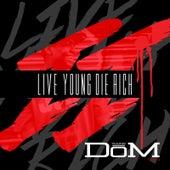 Live Young Die Rich 2 von Young Dom