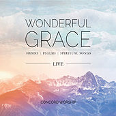 Wonderful Grace (Live) by Concord Worship